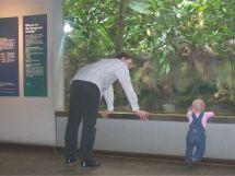 Vater mit Kind vor Aquarium